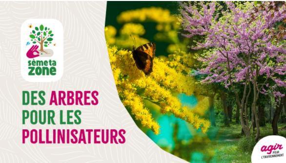 """""""Des arbres pour les abeilles"""""""