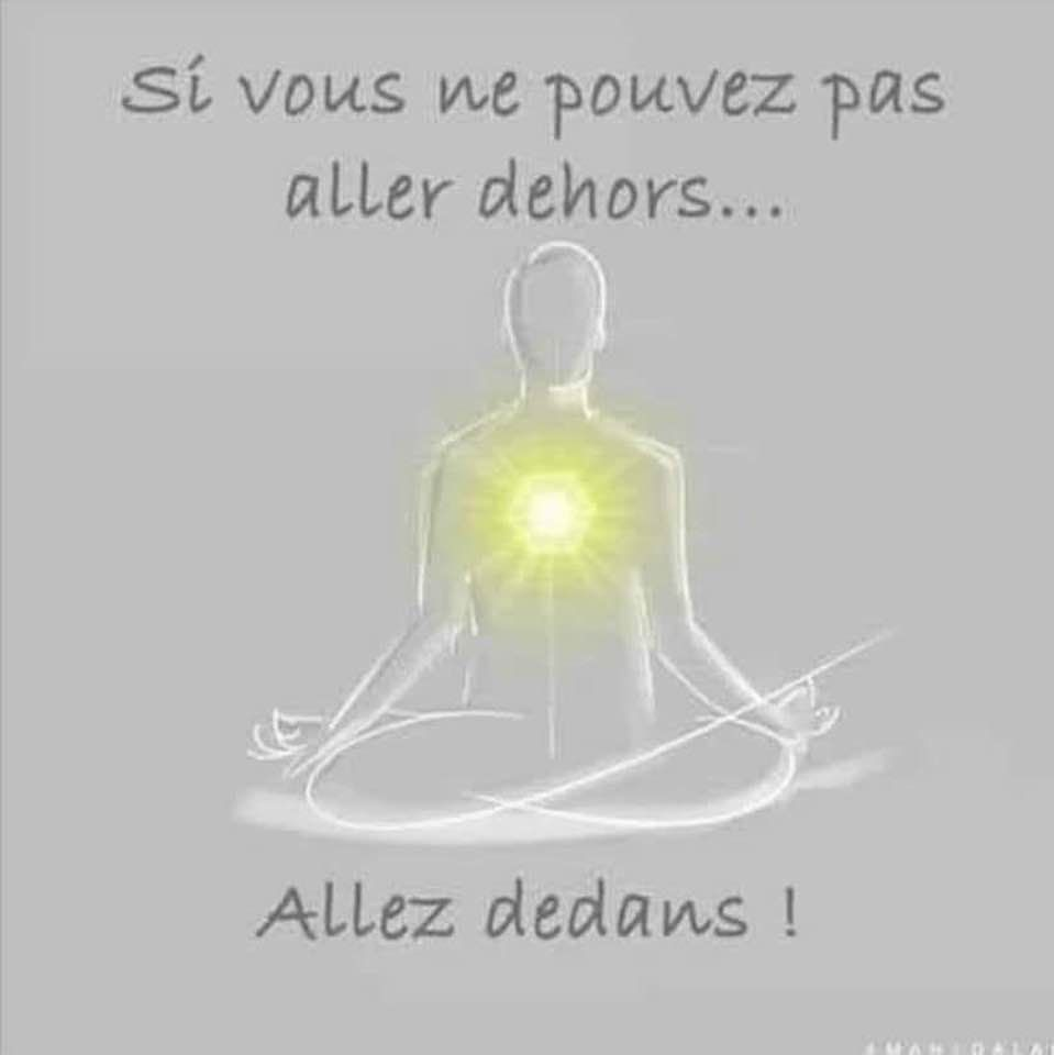 Timothy Leary aurait aime LUCY et LIMITLESS