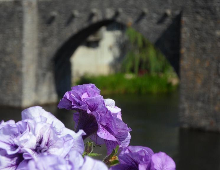 Images d'Occitanie