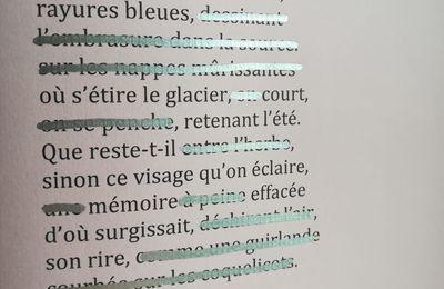 Caviardage - Julie Delaloye