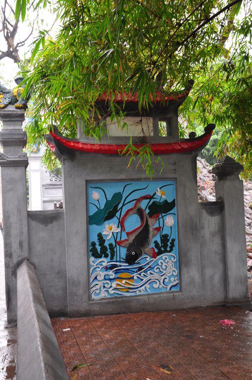 Album - Vietnam 2009