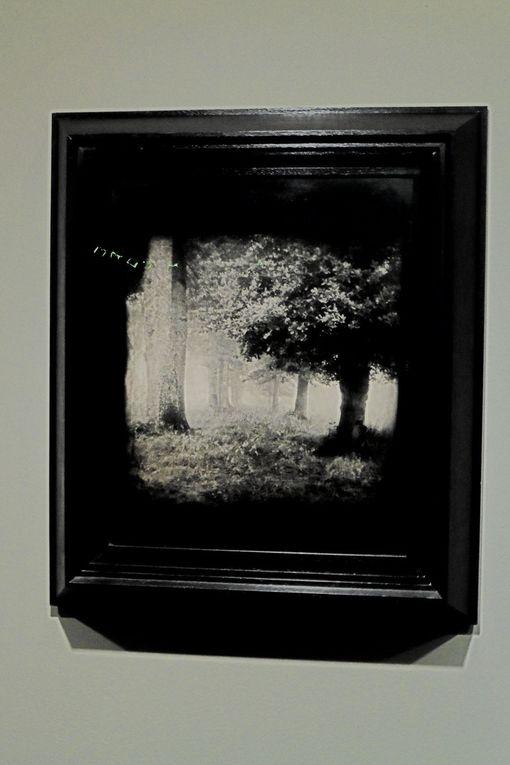 The untitle Jean - Michel Fauquet pictures