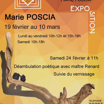 Mes expos