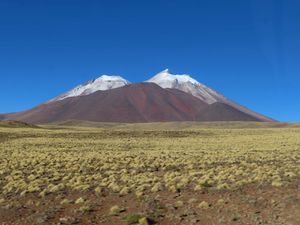 "ATACAMA : Le parc national des ""Flamencos""-2019-"