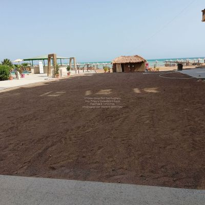 Holiday Home Overseas In Hurghada Red-Sea Start From euro 20.000 With installment up to 2 years