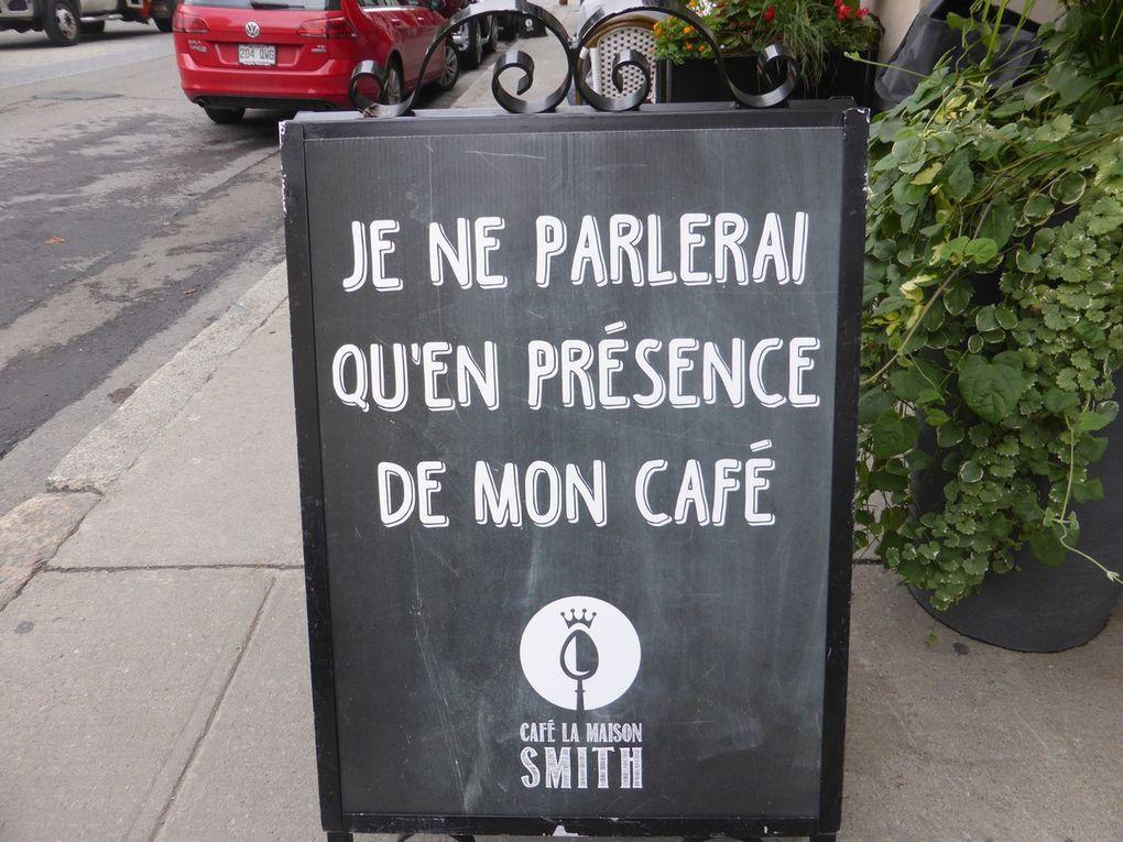 J7 - Sainte Catherine