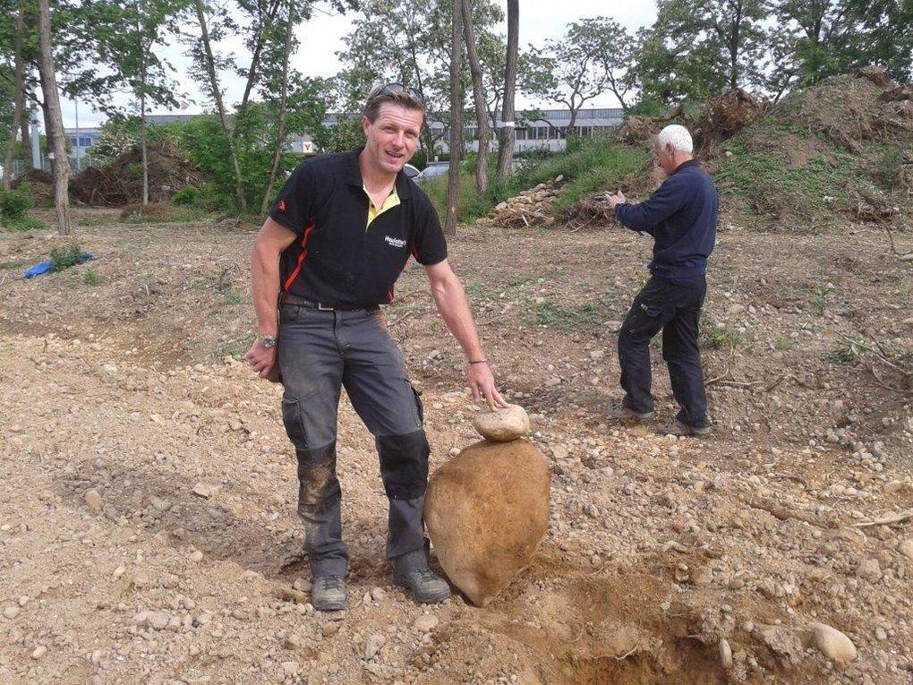 ramassage des cailloux avant engazonnement du nouveau terrain du club canin de l'Ab Caluire : y a du boulot!