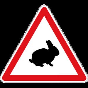 Lap'info peaux de lapins
