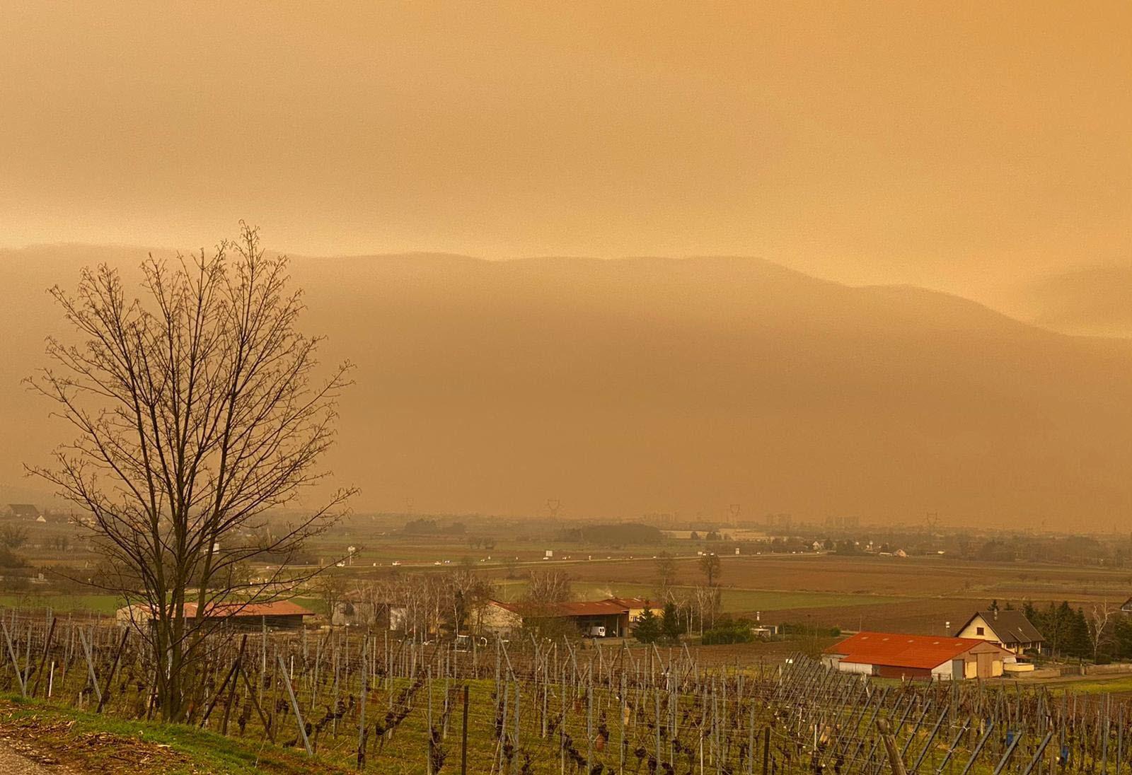À Wettolsheim. Photo : Vanessa Meyer/L'Alsace
