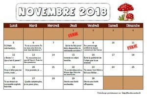 Calendrier d'écriture novembre 2018 CM1-CM2