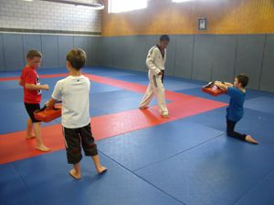 Stage Taekwondo (29/07-02/08)