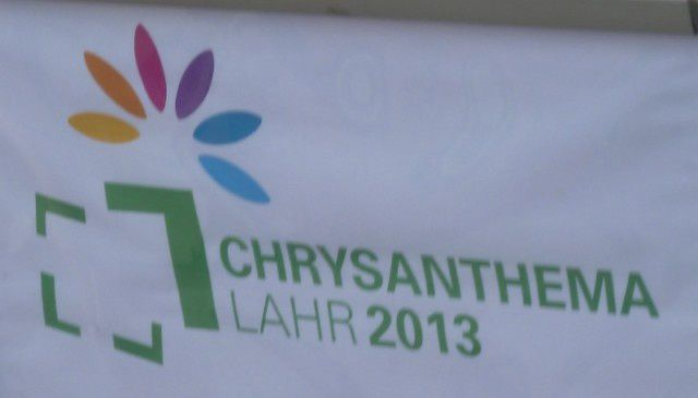 LAHR CHRYSANTHEMA 2013