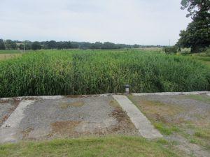 Un débit-mètre contrôle l'arrivée des eaux usées à la station d'épuration. L'eau usée est envoyée dans les bassins de roseaux pour que la pollution soit absorbée par le sol et par les plantes.
