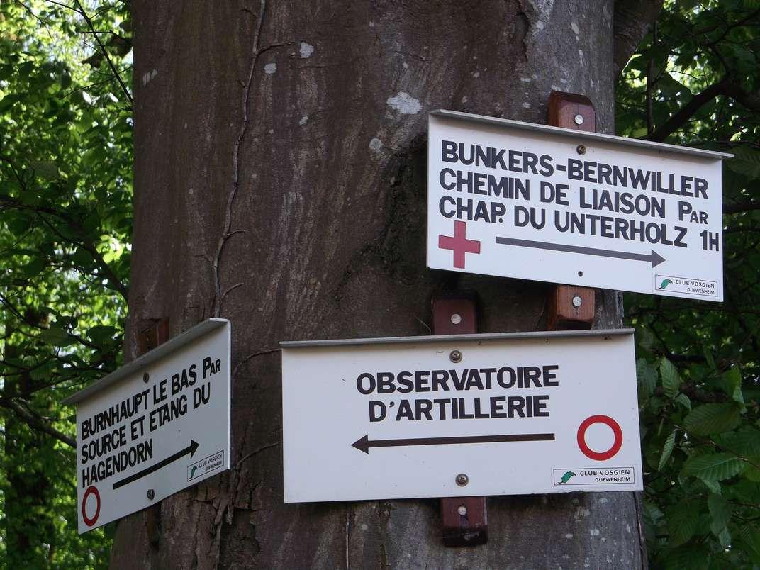 BURNHAUPT-LE-BAS : DES BUNKERS, MAIS PAS QUE… (R 418) - 19,1 km - D+ 159 m - 4 h 30 mn - 2,5/6