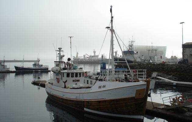 Jeudi 16 août : Reykjavik