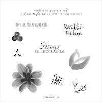 153292 Set de tampons Bouquet magnifique stampin up démonstratrice en france normandie sophie yvelines