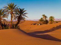 Circuits 4 x 4 au départ de Marrakech & Ouarzazate