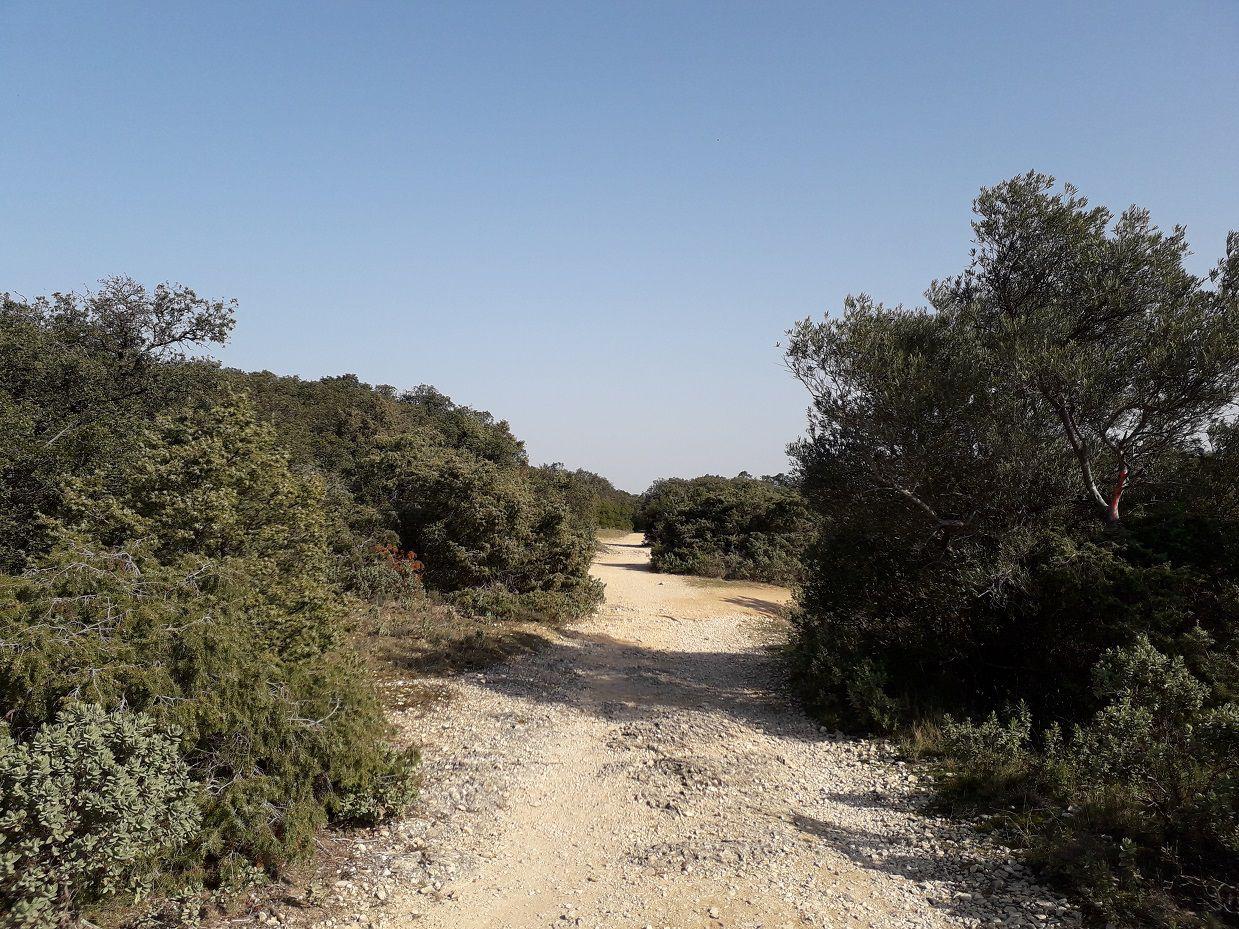 Randonnée sur les Hauts de Villeneuve lez Avignon (30).