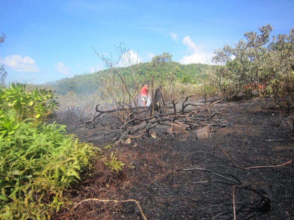 Il faut toujours faire attention quand le feu n'est pas loin ... Photos ...