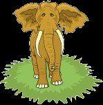 La chasse aux éléphants