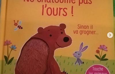 Ne chatouille pas l'ours !
