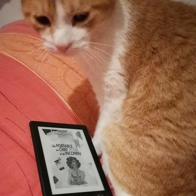 Challenge lecture 2021 #26  Un portable, un chat roux, un inconnu d'Aurore Chatras