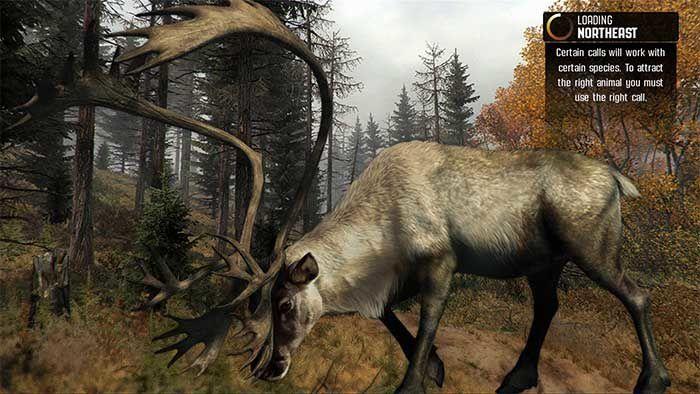 Jeux video: Découvrez un nouvel apercu de Cabela's Big Game Hunter : Pro Hunts !