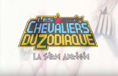 [Animation] CDZ - La série abrégée