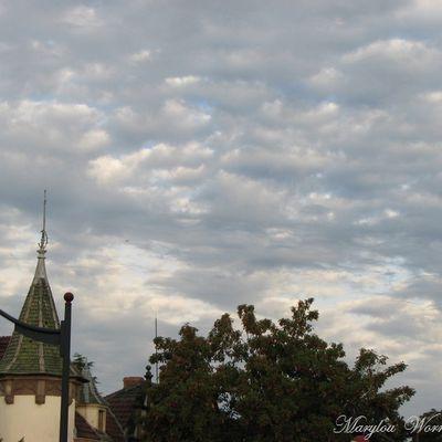Ciel d'Alsace 473