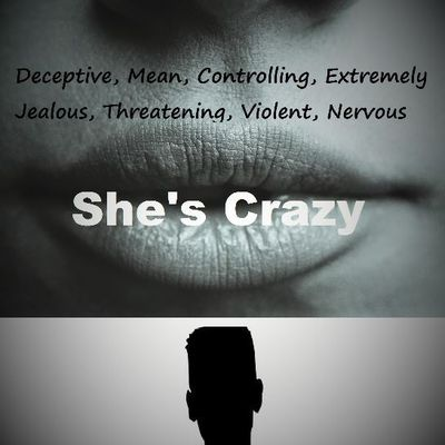 She's Crazy - a book for used and abused men