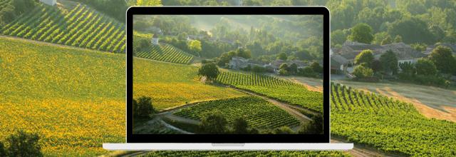 Fascinant Week-End Vignobles & Découverte au vignoble de Gaillac