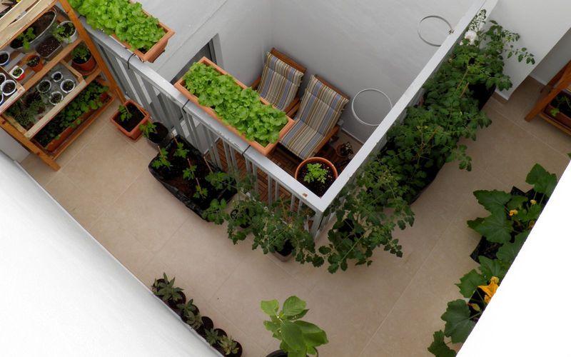 Jardiner au Patio #2