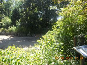 Sortie Zoo de Lille (01/08/2013)