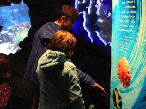 Aquarium Mare Nostrum à Montpellier