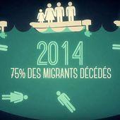 VIDEO. Datagueule : des chiffres contre les idées reçues sur les migrants