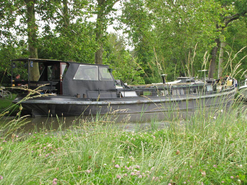 2014 - Canal-du-Midi 2