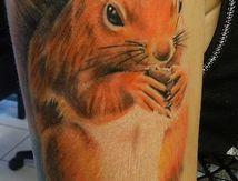 écureuil tatouage réaliste
