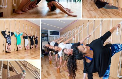 Reasons why you must attend yoga workshops