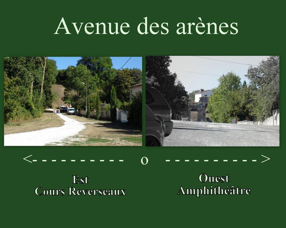 """Selon micro voisinage.... Il y a eu 4 arbres de coupés. Frêne et acacias. Il y avait la maladie parmi, alors il a fallu tronçonner, mais peut-être pas les """" 4 """".  Il est aussi dit que cela avait été fait car il s'agissait de dégager la vue vers les arènes.... ! Chacun son point de vue...  Par ailleurs il serait peut-être utile d'assainir l'autre versant du cours Reverseaux... vers l'est, vers la Charente, via le quartier Berthonnière."""