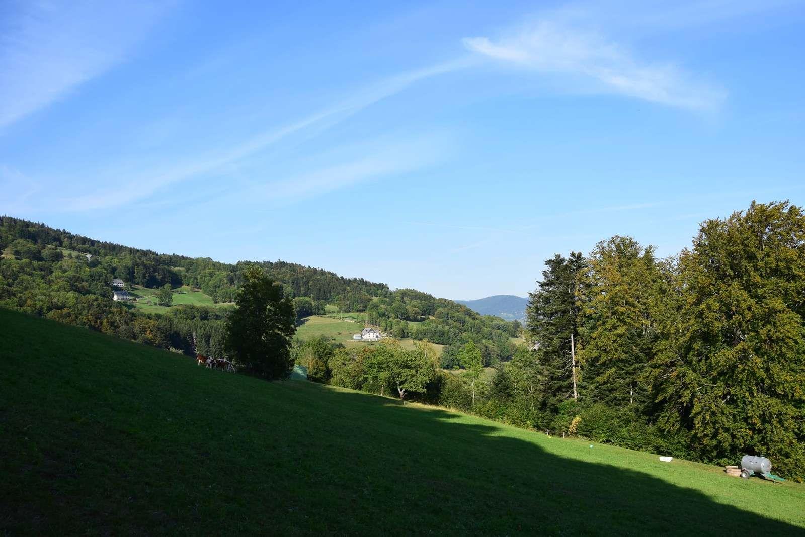 Le Creux d'Argent, la plus beau vallon du pays Welche