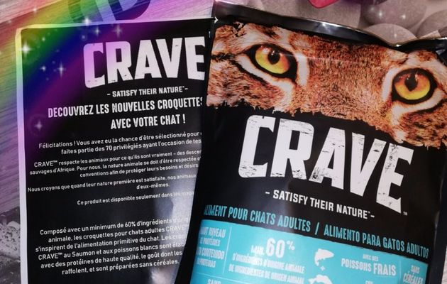 Test croquettes chats