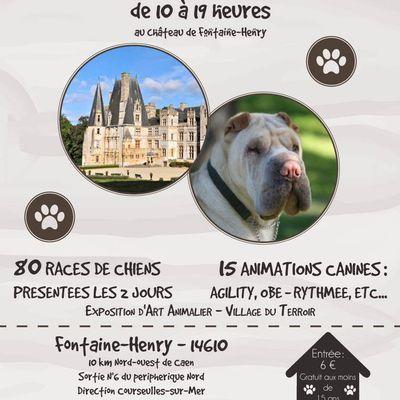 Festival du Chien Fontaine-Henry 1er et 2 mai 2015