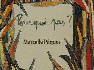 """Marcelle Pâques a lu """"Bruines"""" de Laurent Dumortier"""