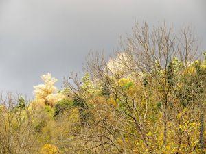 Soleil ou pluie ?