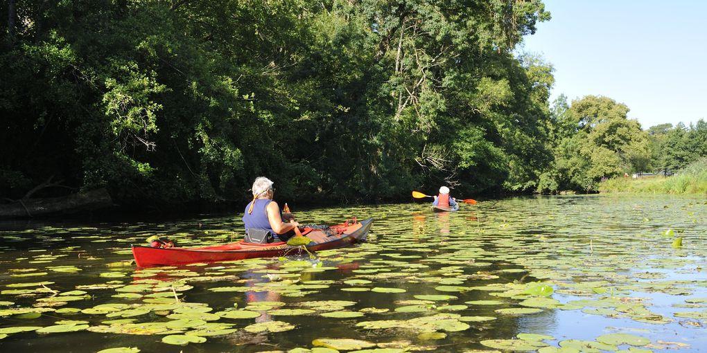 les rats et le mulot en kayak bois sur le don, du 20 et 24 juillet