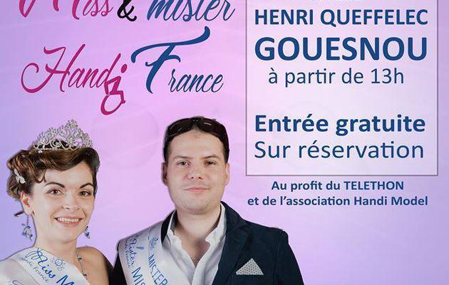 France Handi Art partenaire de Miss et Mister Handi France, 3 mars 2019, qui succèdera à Jennifer et à Régis ? Salle Henri Queffelec à Gouesnou dès 13 h