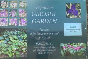 Giboshi garden : une pépinière comme je les aime... et tout ce que j'y ai trouvé