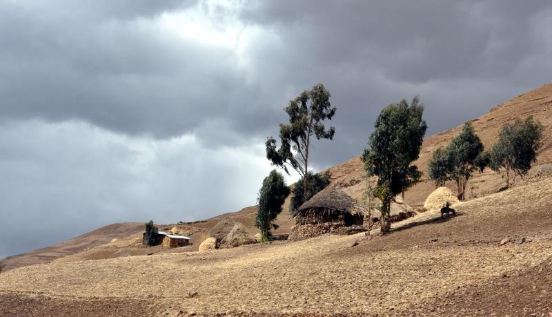 Ethiopie, monts Simien, camp d'Ambiko