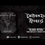 DEMENZIA MORTIS - BLOOD RITUAL feat. MATT & MARVIN (OFFICIAL VIDEO TRACK)