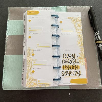 Plan with Me: Mini Skinny happy planner_ Semaine 15